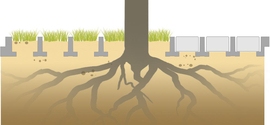 TTE® for root protection areas