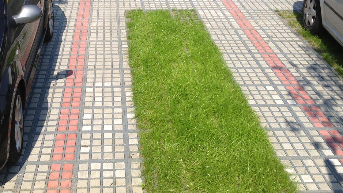 Gemeinsame Rasengitterplatten - TTE®-Außenanlagen - ökologisch und preiswert #LK_89
